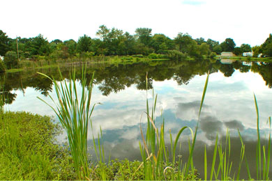 The pond at Okaw Valley is stocked with bass, catfish and blue gill.